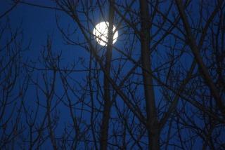 moon2_0